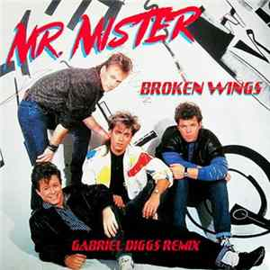Mr. Mister - Broken Wings (Gabriel Diggs Remix) Scaricare